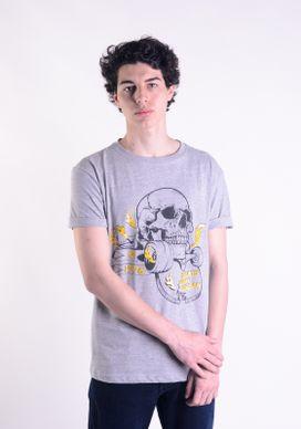 Camiseta-Mescla-Cinza-Skate-Skull