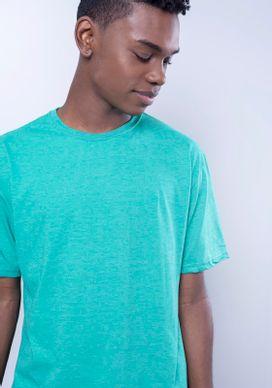 Camiseta-Basica-Verde-Bandeira