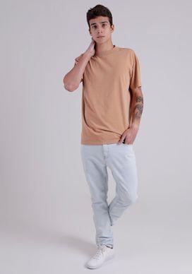 34340275-camiseta-biscuit-lavad5